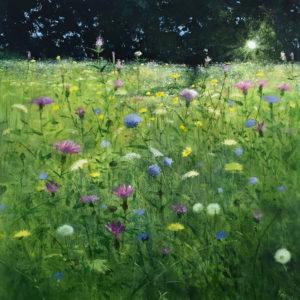 Heather Howe – The Meadow Garden