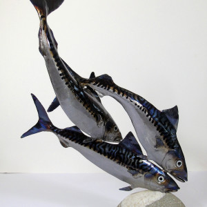 Nigel Wills – Trio of Mackerel
