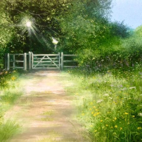 HH – Buttercups by the Kissing Gate