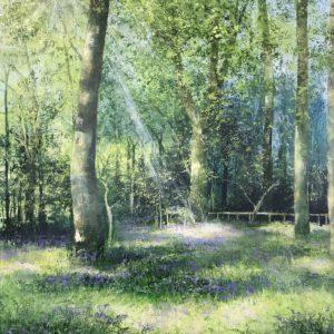 Heather Howe – Morning Light, Penrose