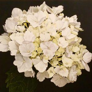 Rebecca Jewell – Pretty in White